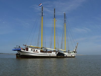 Grote Beer| Droogvallen| Holland Sail