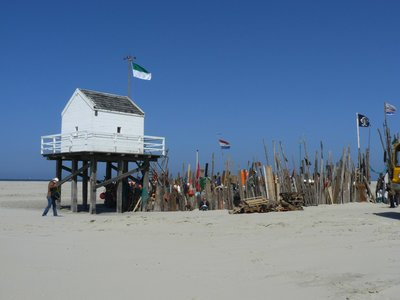 Grote Beer | Strand | Holland Sail